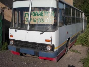 Продаётся Ikarus-280 гармошка в Зеленограде - DSCN0726.JPG