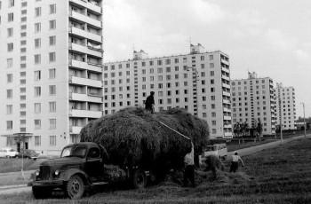 Фото Рафиков в вашем городе все модели РАФ  - 6bLkajDZr-M.jpg