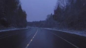 путь домой - DSCF3119.JPG