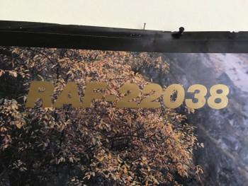 Раф 22031-01; 1993г.в. Люкс; Высокая Крыша; ЗМЗ-402; Среднемагистральный лайнер :- В Москве - 3 AFE703A7-064C-401C-B785-B68CD47B86CA.jpeg